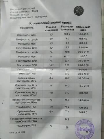 http://forumupload.ru/uploads/000f/f6/ce/6/t95386.jpg