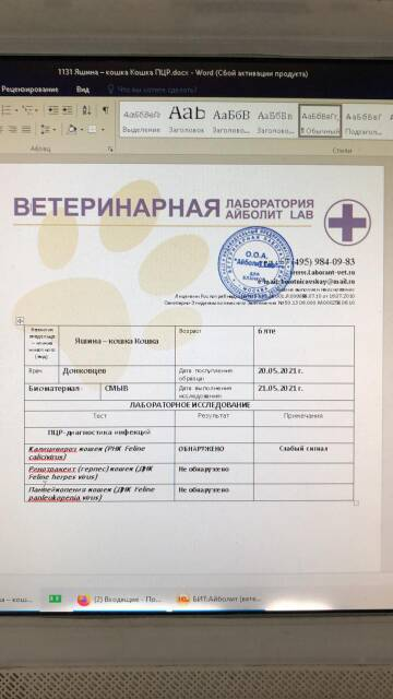 https://forumupload.ru/uploads/000f/f6/ce/6/t999728.jpg