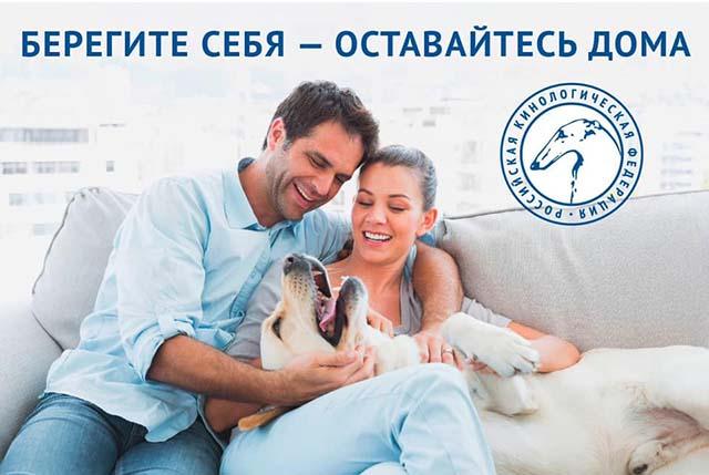 http://forumupload.ru/uploads/0010/0a/de/3/49395.jpg