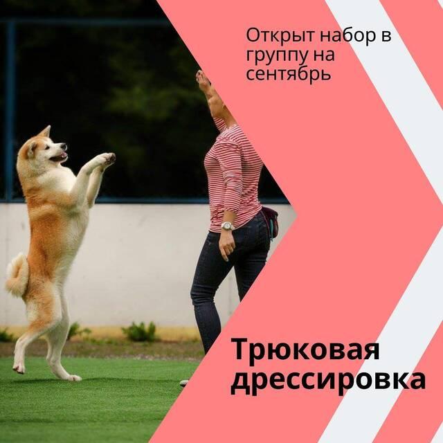 http://forumupload.ru/uploads/0010/0a/de/3/740014.jpg
