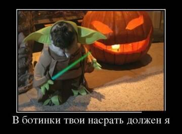 http://forumupload.ru/uploads/0010/0e/16/2/t366446.jpg
