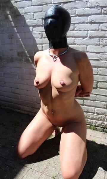http://forumupload.ru/uploads/0010/8e/30/15/t859065.jpg