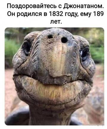 http://forumupload.ru/uploads/0010/8e/30/19/t107435.jpg