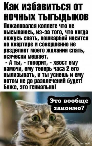 http://forumupload.ru/uploads/0010/8e/30/19/t324408.jpg