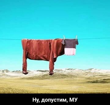 http://forumupload.ru/uploads/0010/8e/30/19/t601093.jpg