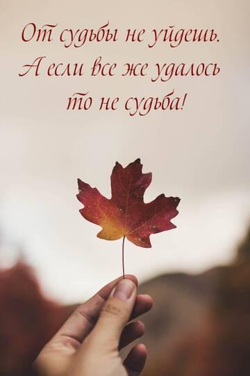 http://forumupload.ru/uploads/0010/8e/30/30/t225964.jpg