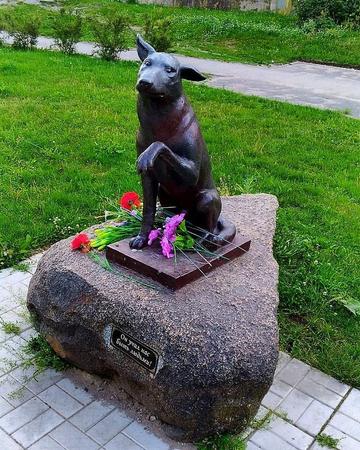 Памятник бездомному псу Юрику в Новой Ладоге