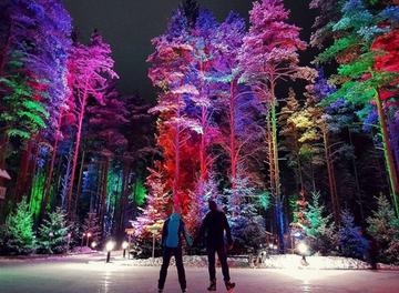 Подборка лучших катков под открытым небом в Петербурге