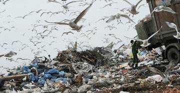 На площадке «МПБО-2» на Волхонке растут горы мусора