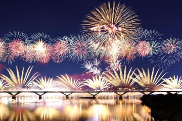 Салюта на Новый год в Петербурге тоже не будет Главный праздник зимы