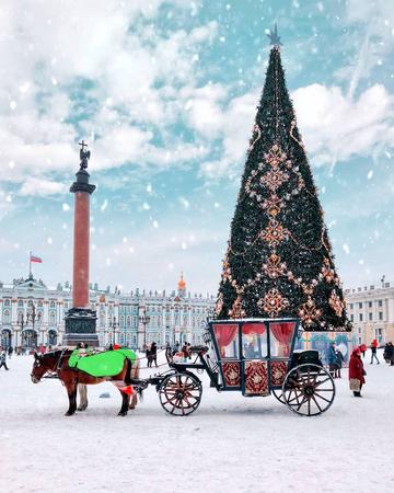 Как Петербург готовится к празднованию Нового года