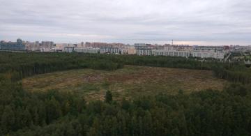 Жители Приморского района устали от алчного Цеда
