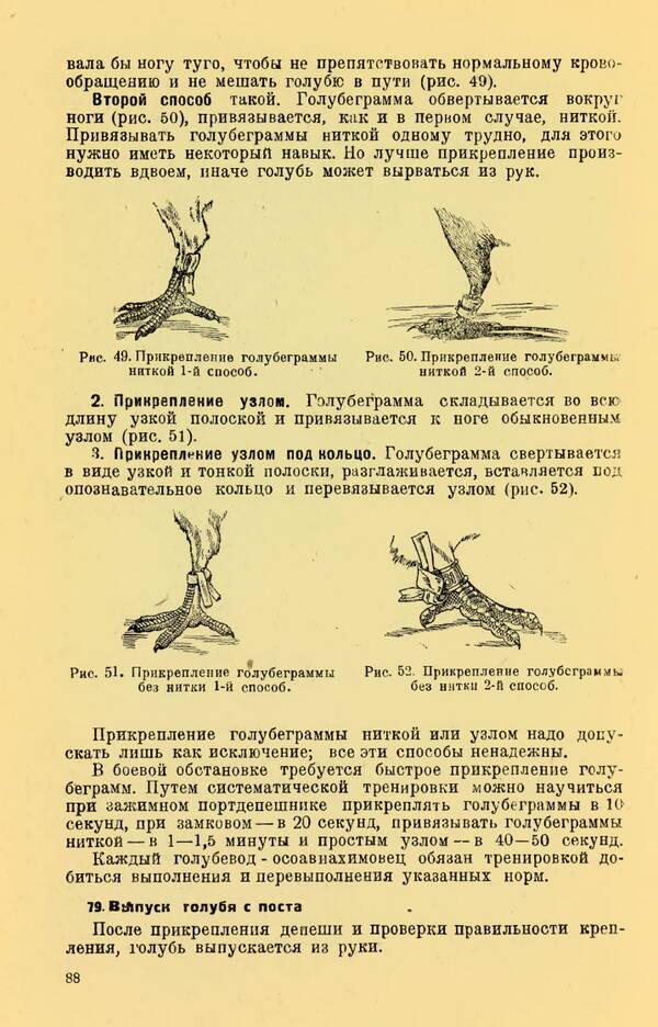 http://forumupload.ru/uploads/0010/d2/fe/762/t65554.jpg