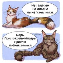 http://forumupload.ru/uploads/0011/3f/cf/2/748550.jpg