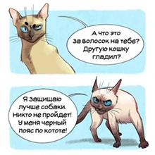 http://forumupload.ru/uploads/0011/3f/cf/2/809899.jpg