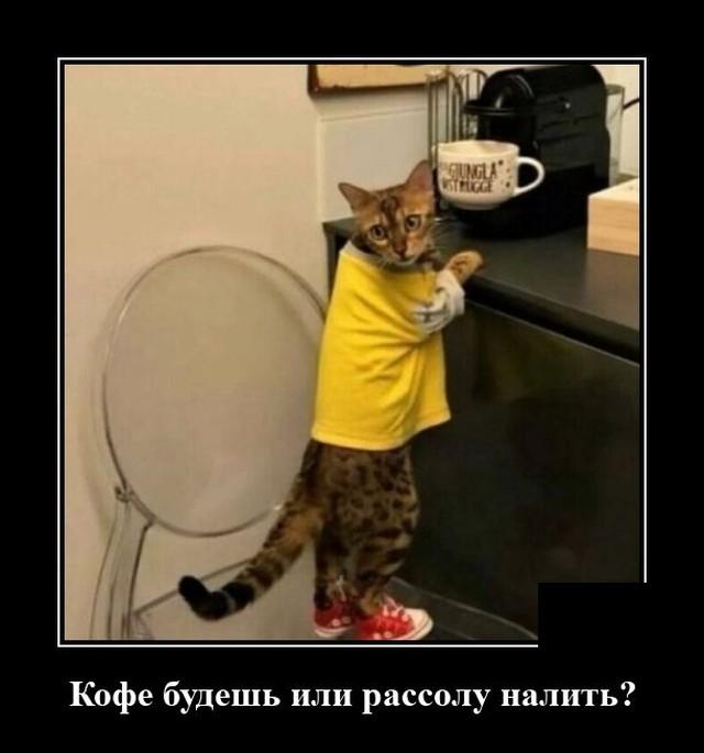 https://forumupload.ru/uploads/0011/7a/32/9498/635086.jpg