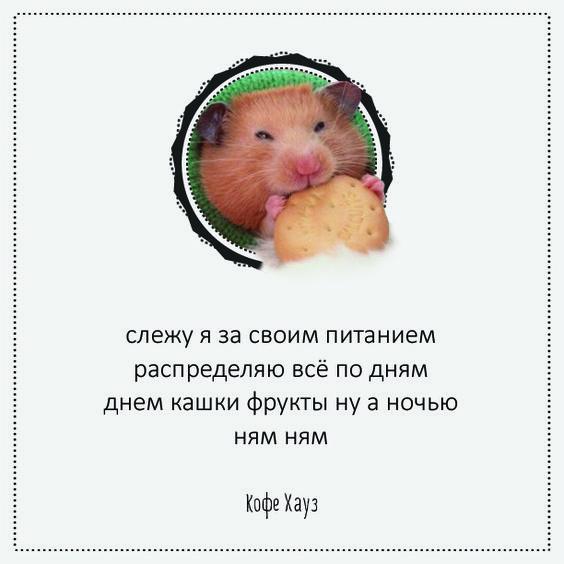 http://forumupload.ru/uploads/0011/7a/32/9498/t44962.jpg