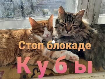 http://forumupload.ru/uploads/0011/90/c9/13/t825293.jpg