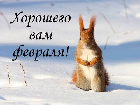 https://forumupload.ru/uploads/0011/9c/2c/32/t888197.jpg