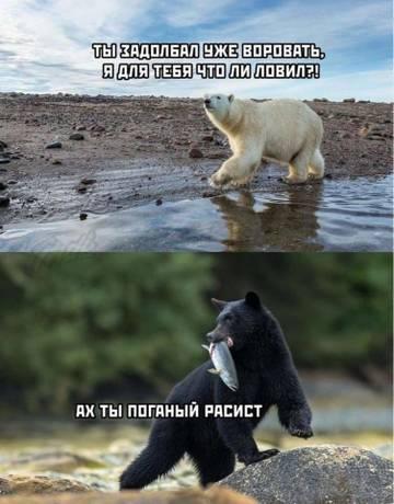 http://forumupload.ru/uploads/0011/e4/51/21/t40354.jpg