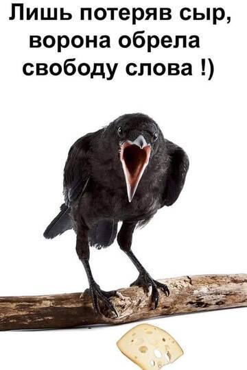 http://forumupload.ru/uploads/0011/e4/51/21/t823195.jpg