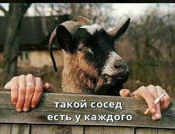 https://forumupload.ru/uploads/0012/15/01/650/t609633.jpg