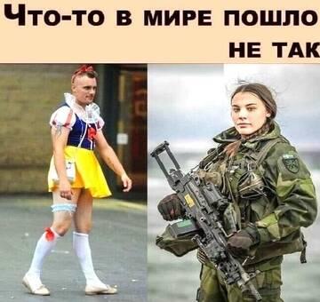 https://forumupload.ru/uploads/0012/15/01/650/t88214.jpg