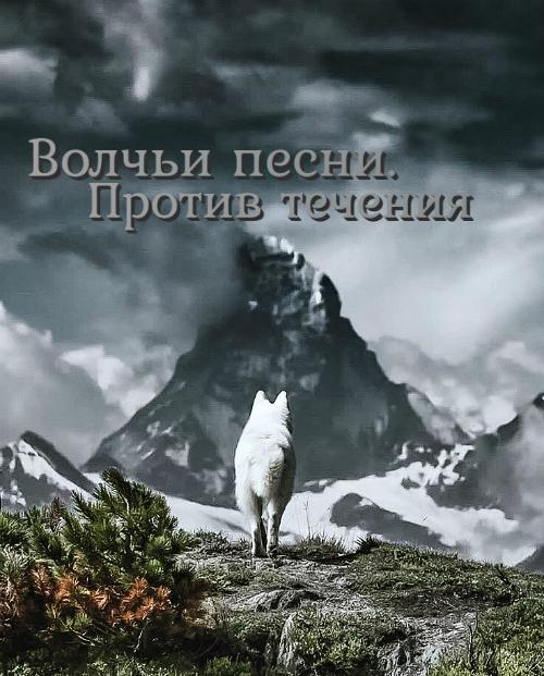 https://forumupload.ru/uploads/0012/32/1d/65/204801.jpg