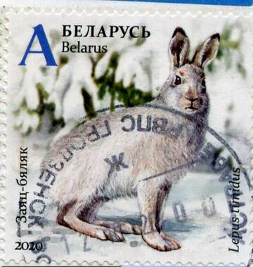 http://forumupload.ru/uploads/0012/46/3b/34/t182099.jpg