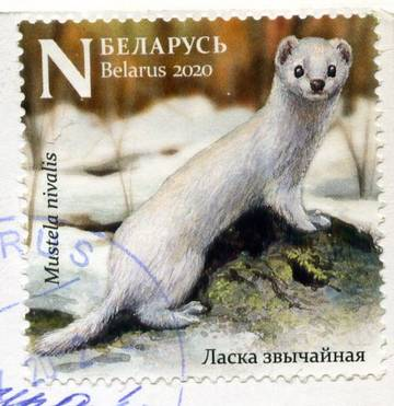 http://forumupload.ru/uploads/0012/46/3b/34/t834296.jpg