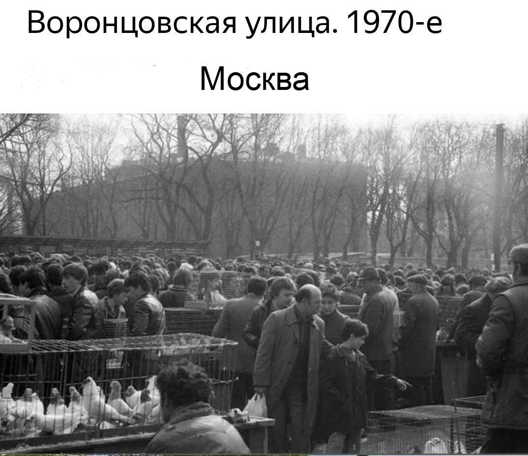 http://forumupload.ru/uploads/0012/5a/ef/2/400364.jpg