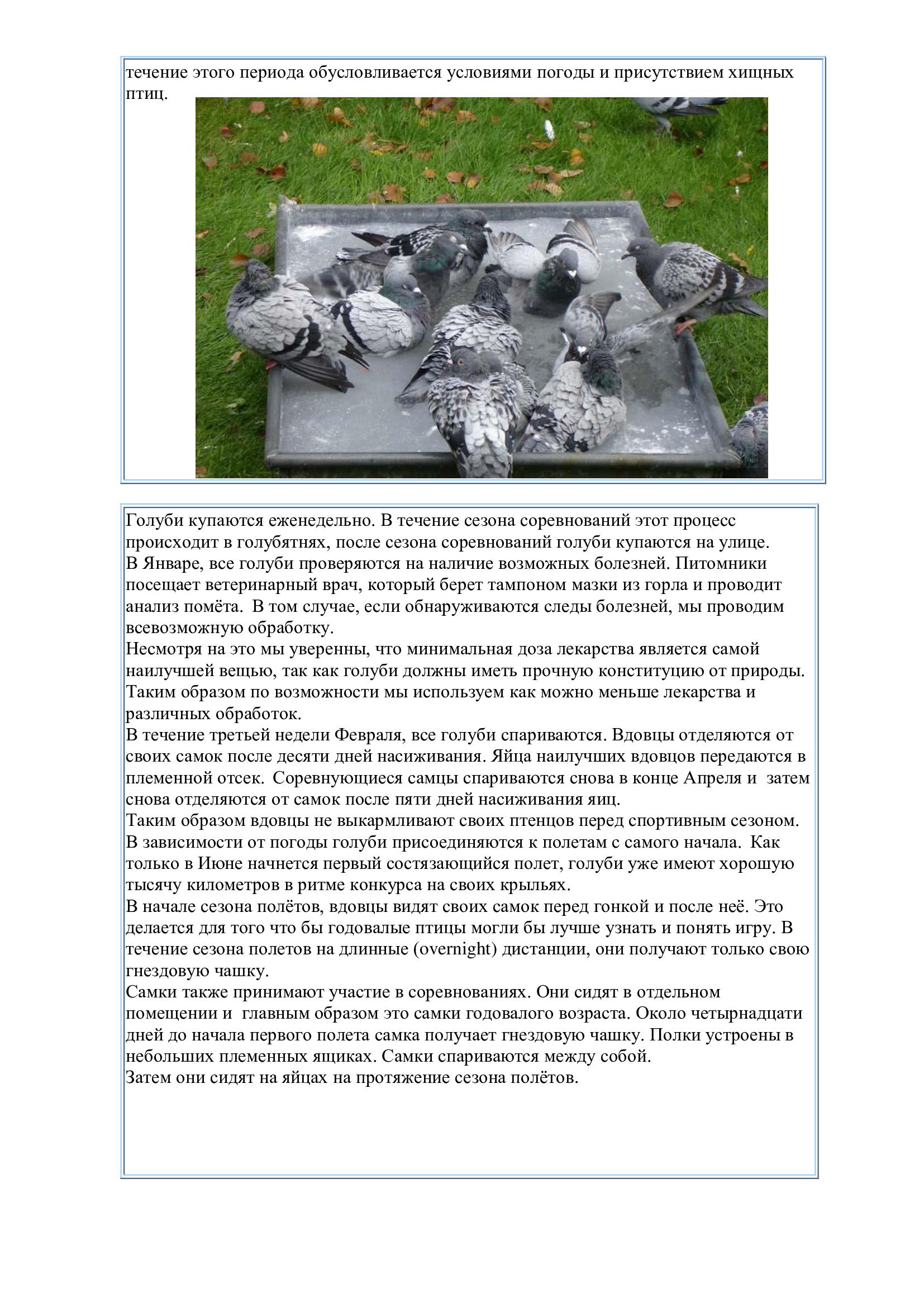 http://forumupload.ru/uploads/0012/5a/ef/2/524213.jpg