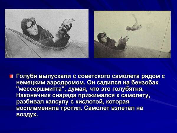 http://forumupload.ru/uploads/0012/5a/ef/2/t209640.jpg