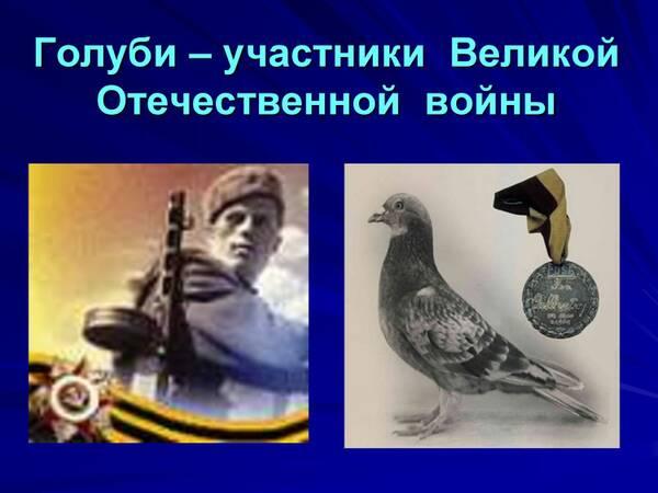 http://forumupload.ru/uploads/0012/5a/ef/2/t347641.jpg
