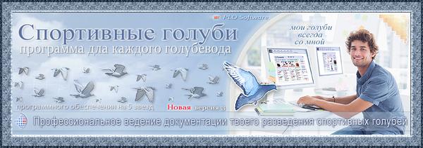 https://forumupload.ru/uploads/0012/5a/ef/2/t364910.png