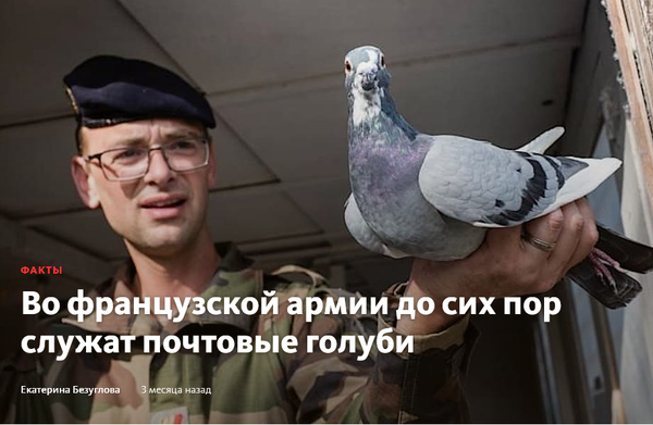http://forumupload.ru/uploads/0012/5a/ef/2/t374593.png