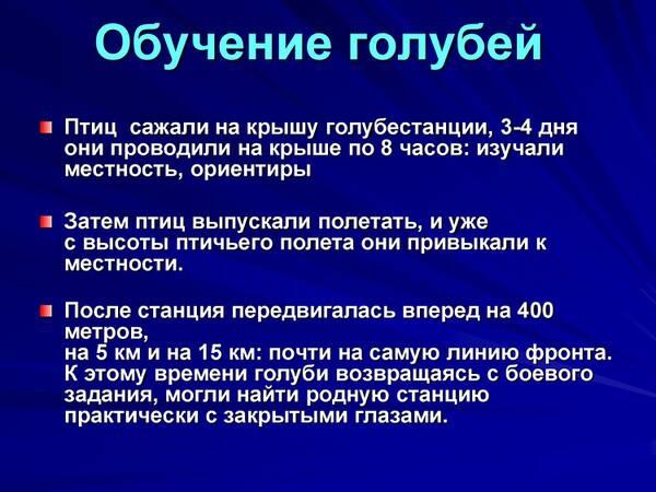 http://forumupload.ru/uploads/0012/5a/ef/2/t577358.jpg