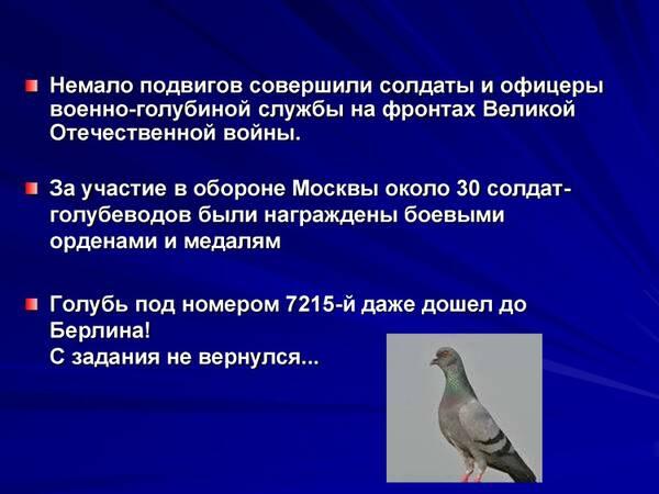 http://forumupload.ru/uploads/0012/5a/ef/2/t613841.jpg