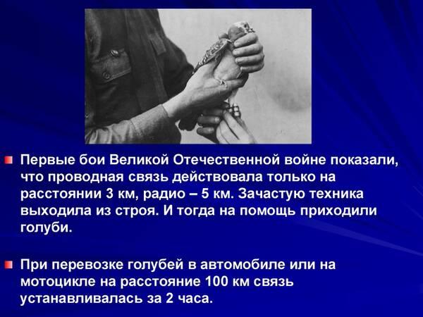 http://forumupload.ru/uploads/0012/5a/ef/2/t615880.jpg