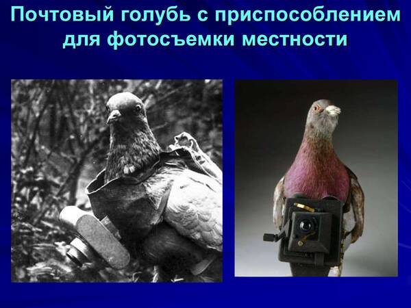 http://forumupload.ru/uploads/0012/5a/ef/2/t678204.jpg