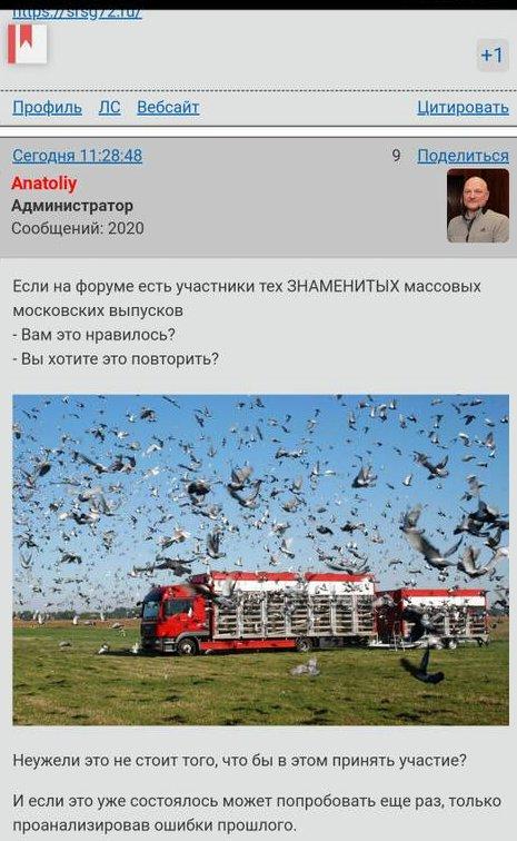 https://forumupload.ru/uploads/0012/5a/ef/2/t684464.jpg