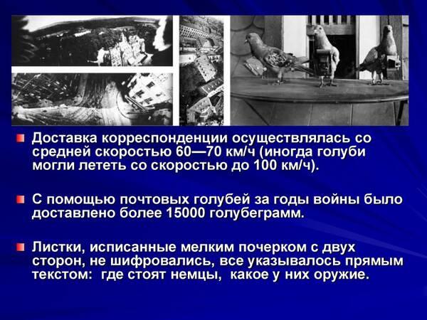 http://forumupload.ru/uploads/0012/5a/ef/2/t793892.jpg