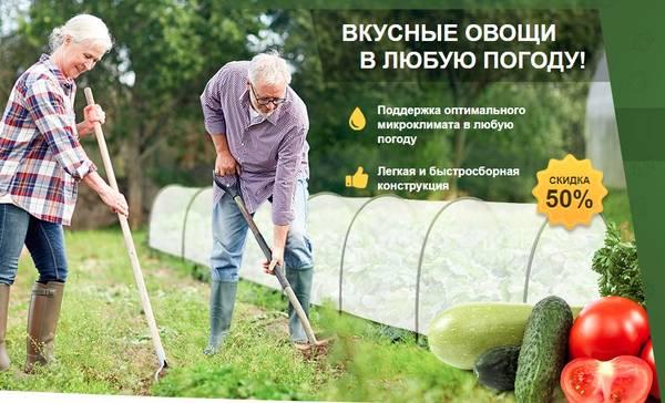 http://forumupload.ru/uploads/0012/b6/ff/2/t99881.jpg