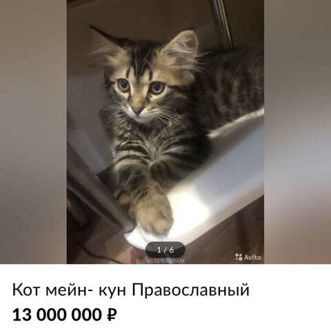 http://forumupload.ru/uploads/0012/c8/8c/9/t639922.jpg