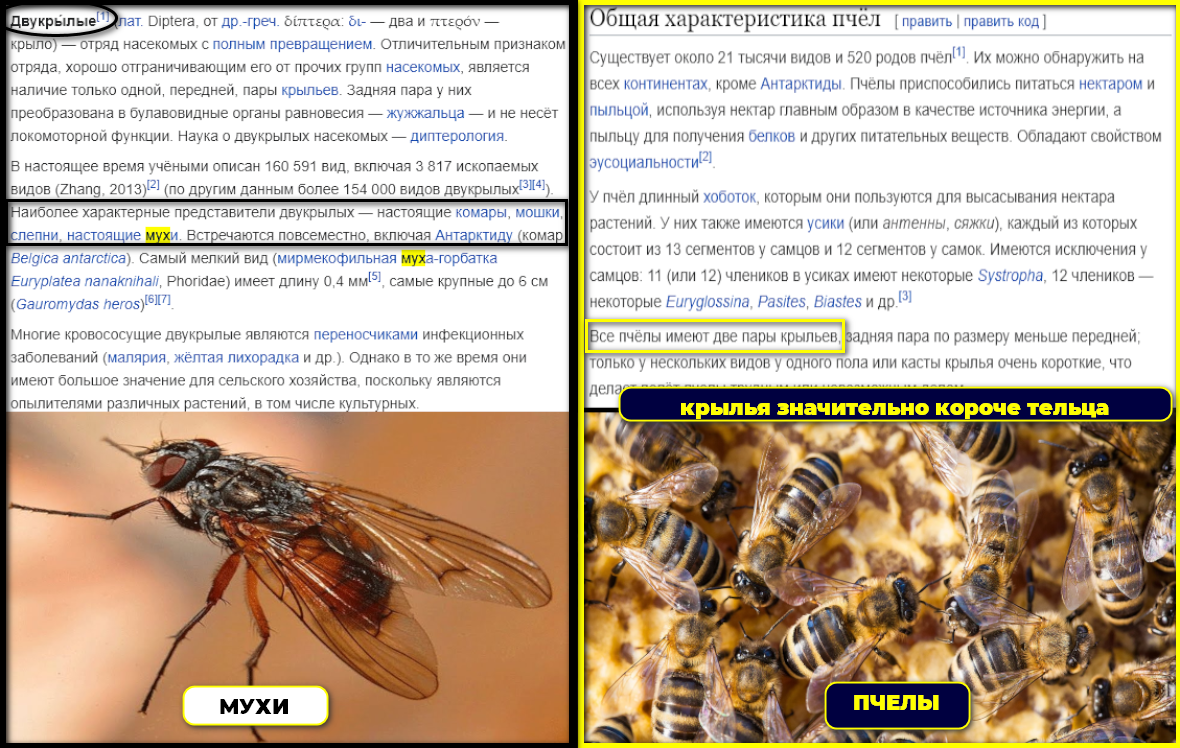 https://forumupload.ru/uploads/0012/d6/0d/1894/410984.png