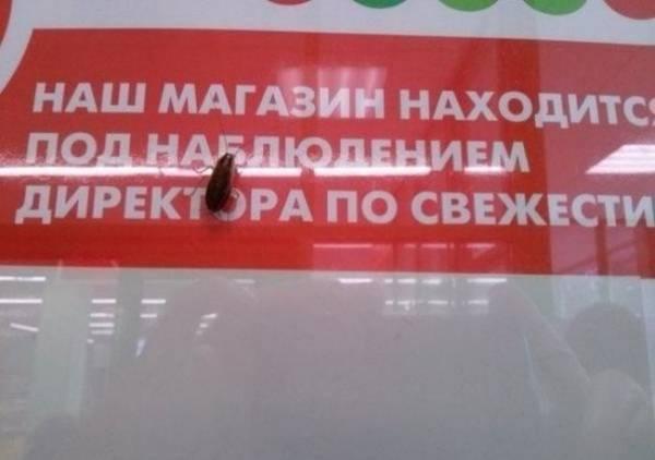 http://forumupload.ru/uploads/0012/d6/0d/518/t123830.jpg