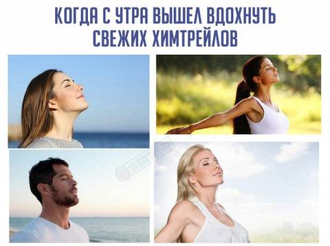 http://forumupload.ru/uploads/0012/d6/0d/903/t403085.jpg