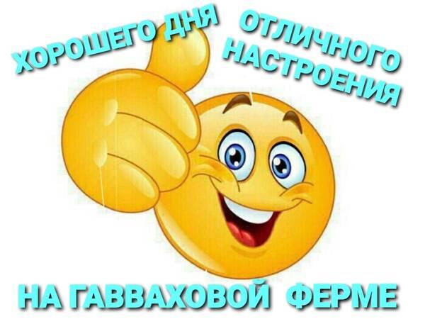 http://forumupload.ru/uploads/0012/d6/0d/903/t640938.jpg