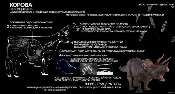 http://forumupload.ru/uploads/0012/d6/0d/903/t659007.jpg