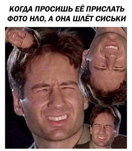 http://forumupload.ru/uploads/0012/d6/0d/903/t849293.jpg